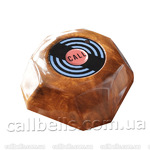 Мощная кнопка вызова официанта RECS HCM-110 USA